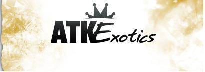Up to 35% off ATK Exotics Discount